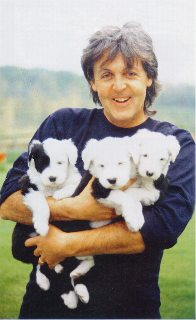 Paul with puppies